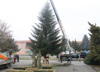 stromcek_04